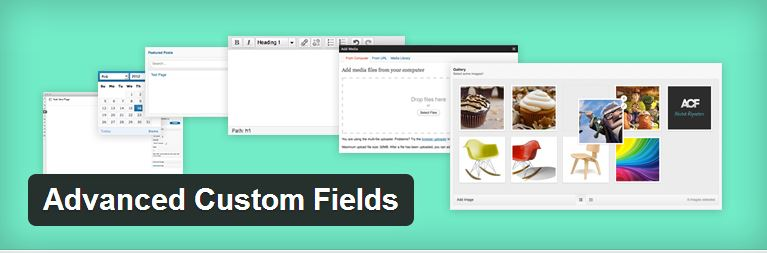 إضافة advanced custom fields للووردبريس