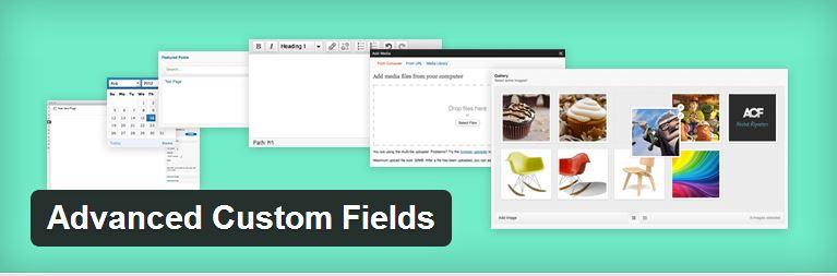 إضافة advanced custom fields للووردبريس